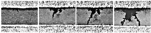 Стадии роста металлических дендритов: а — 2 мин; б — 2,5 мин; в — 3 мин; г — 4 мин